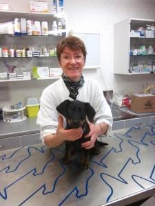 Joëlle Schuh, assitante vétérinaire